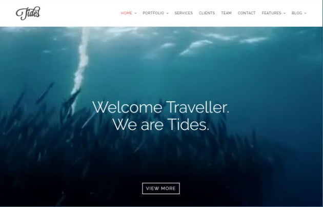 Tides - 26+ Nice WordPress Video Themes For Motion Designer [year]