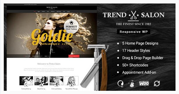 Trend-Salon - 31+ Best Hairdresser & Portfolio WordPress Themes [year]
