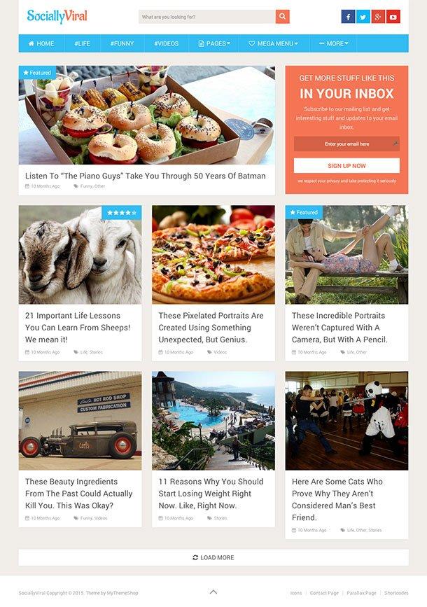 111-8 - 36+ Responsive WordPress SEO Friendly Themes [year]