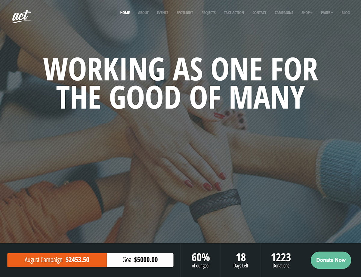 Act - 36+ Amazing WordPress Themes For Non-Profit, Charity [year]