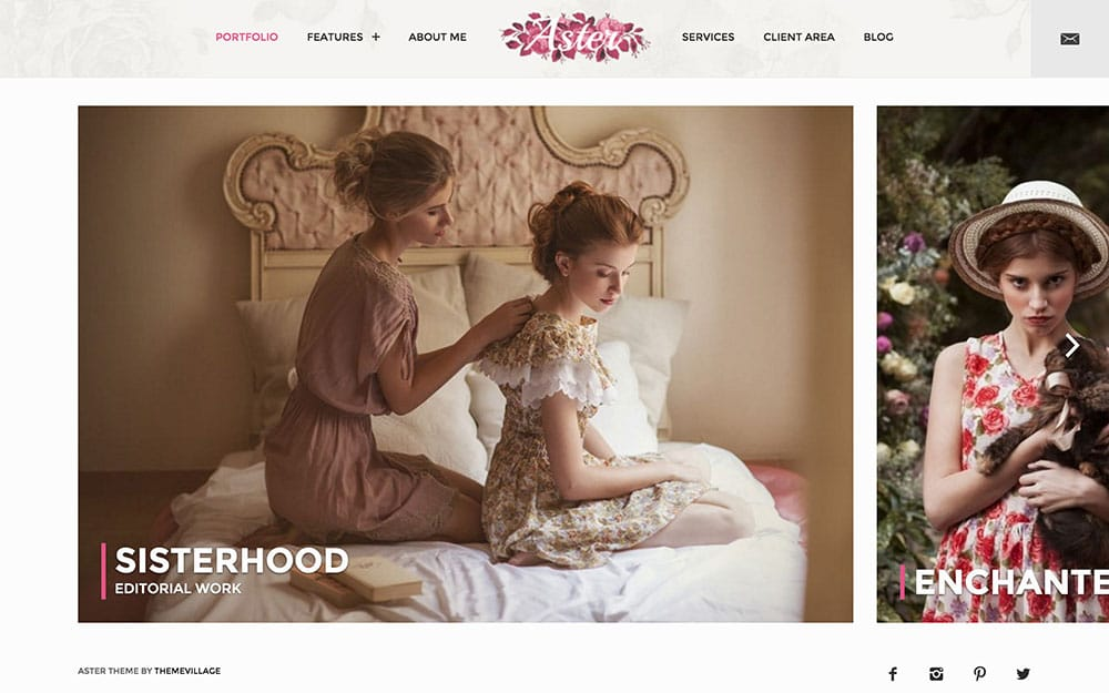 Aster - 36+ Top Quality WordPress Themes For Photography [year]