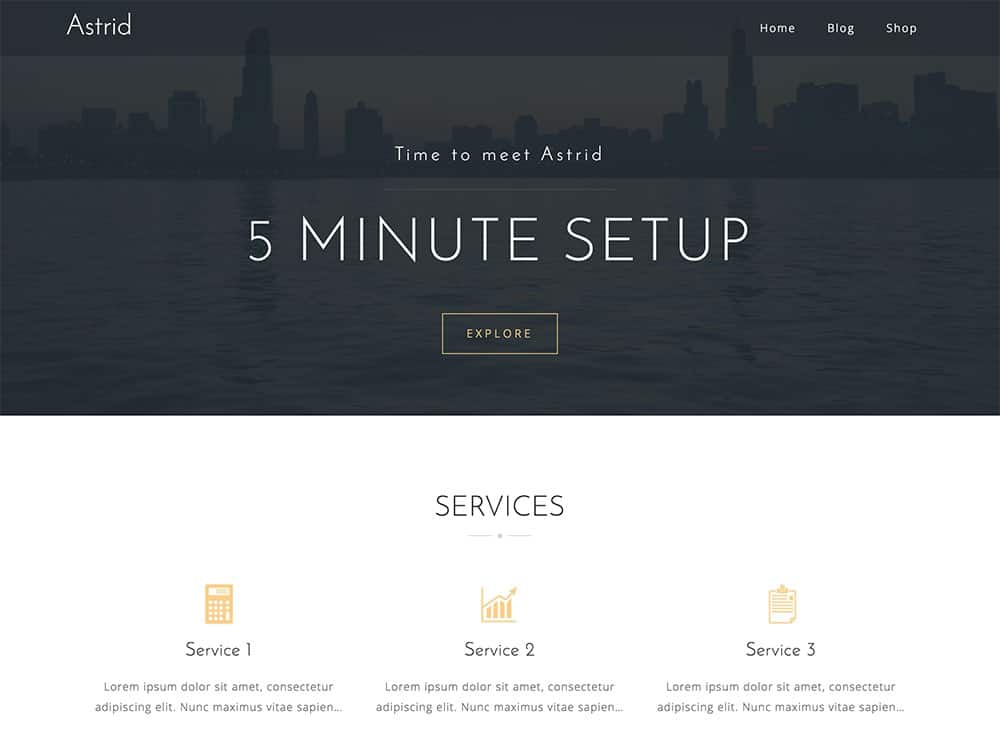 Astrid - 46+ Nice Free WordPress Portfolio Themes [year]