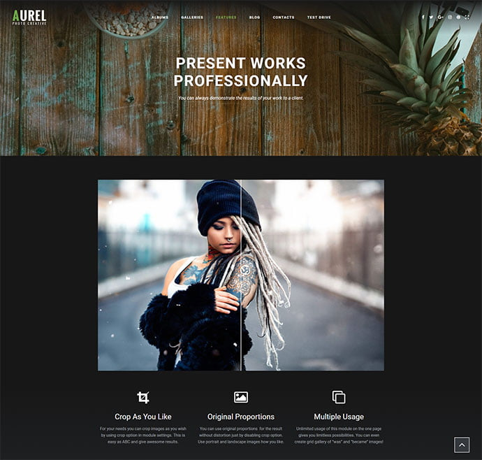 Aurel-1 - 31+ Nice WordPress Themes For Dark Photography Portfolio [year]