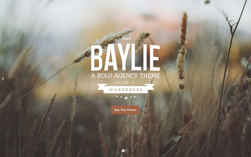Baylie - 41+ Amazing WordPress Parallax Themes For You [year]