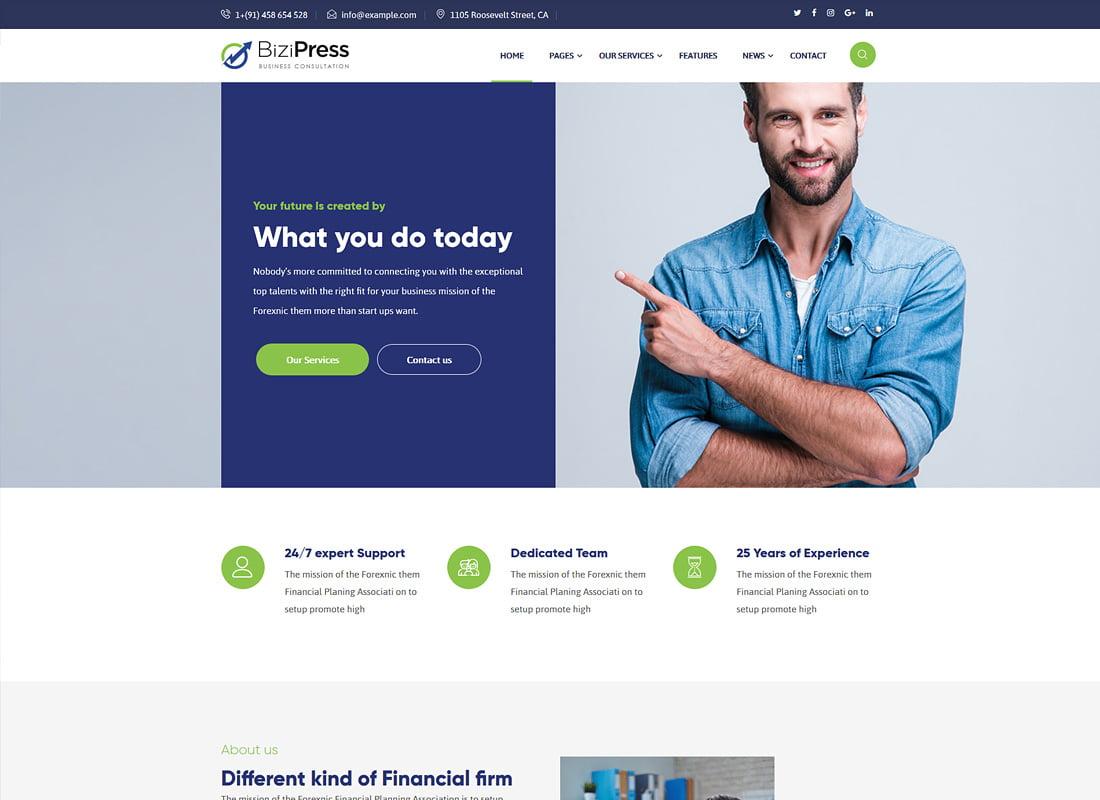 BiziPress - 36+ Amazing WordPress Insurance Themes [year]