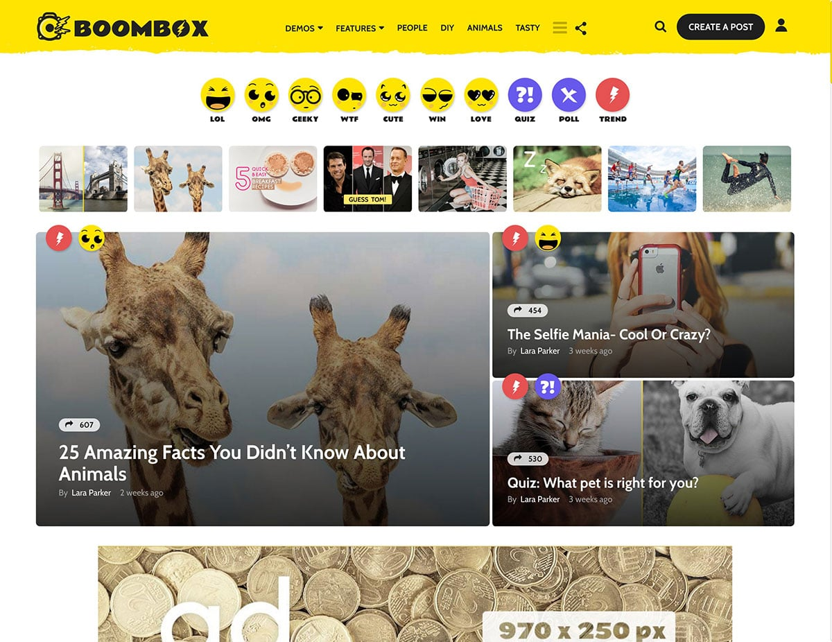 BoomBox - 30+ Top Quality WordPress Themes For Viral [year]