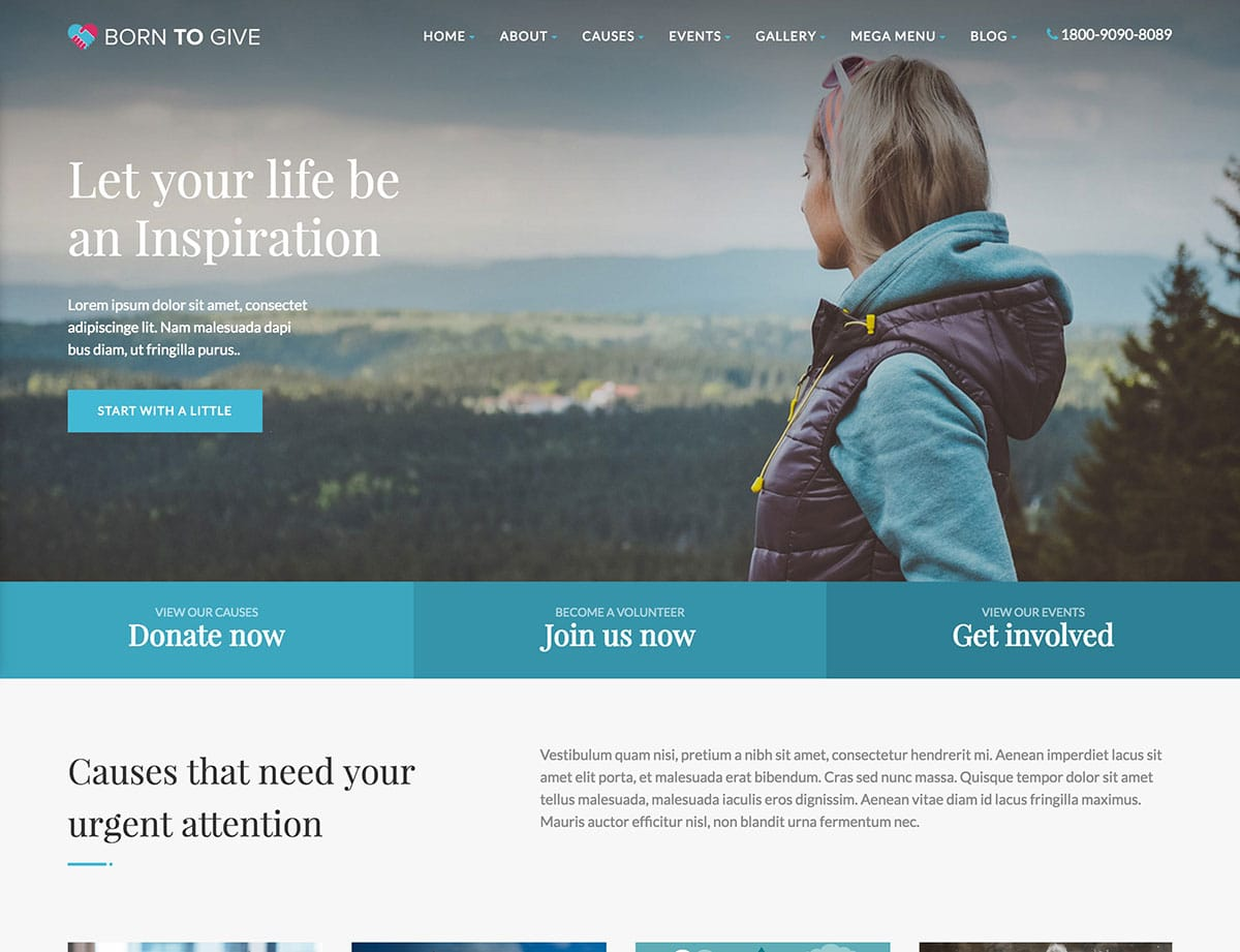 Born-To-Give - 36+ Amazing WordPress Themes For Non-Profit, Charity [year]