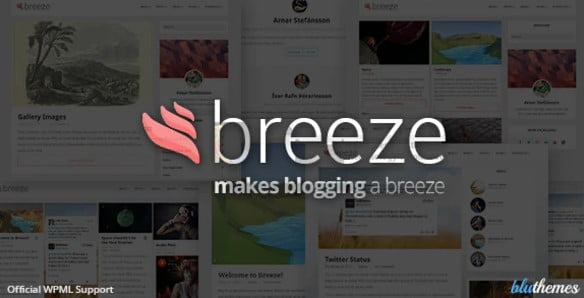 Breeze - 36+ Awesome Minimalist WordPress Themes [year]