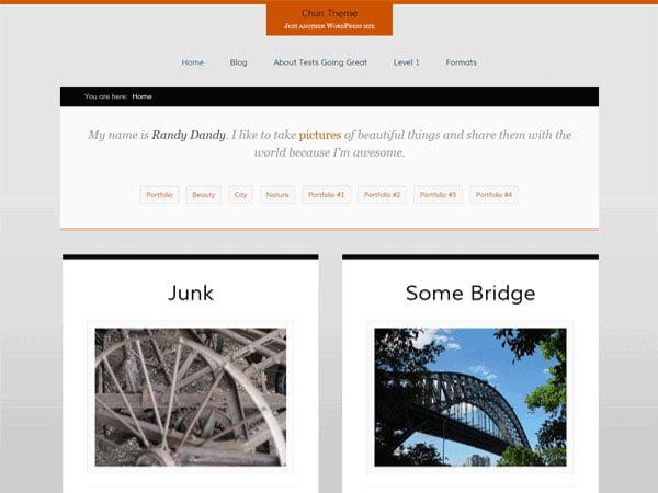 Chun - 46+ Nice Free WordPress Portfolio Themes [year]