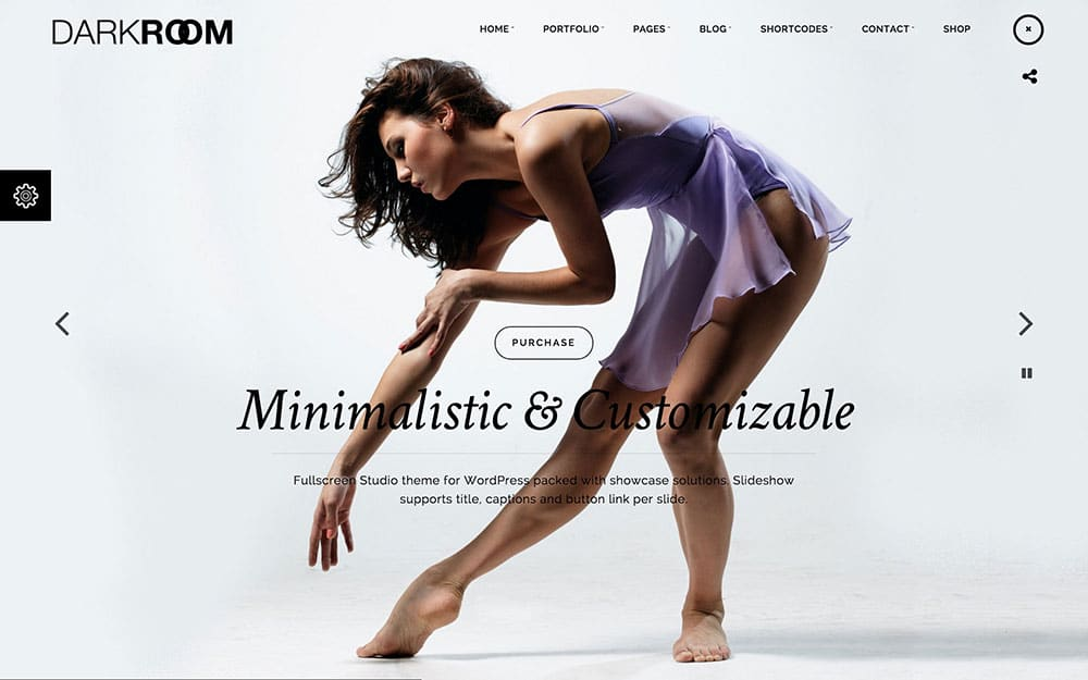 Darkroom - 36+ Top Quality WordPress Themes For Photography [year]