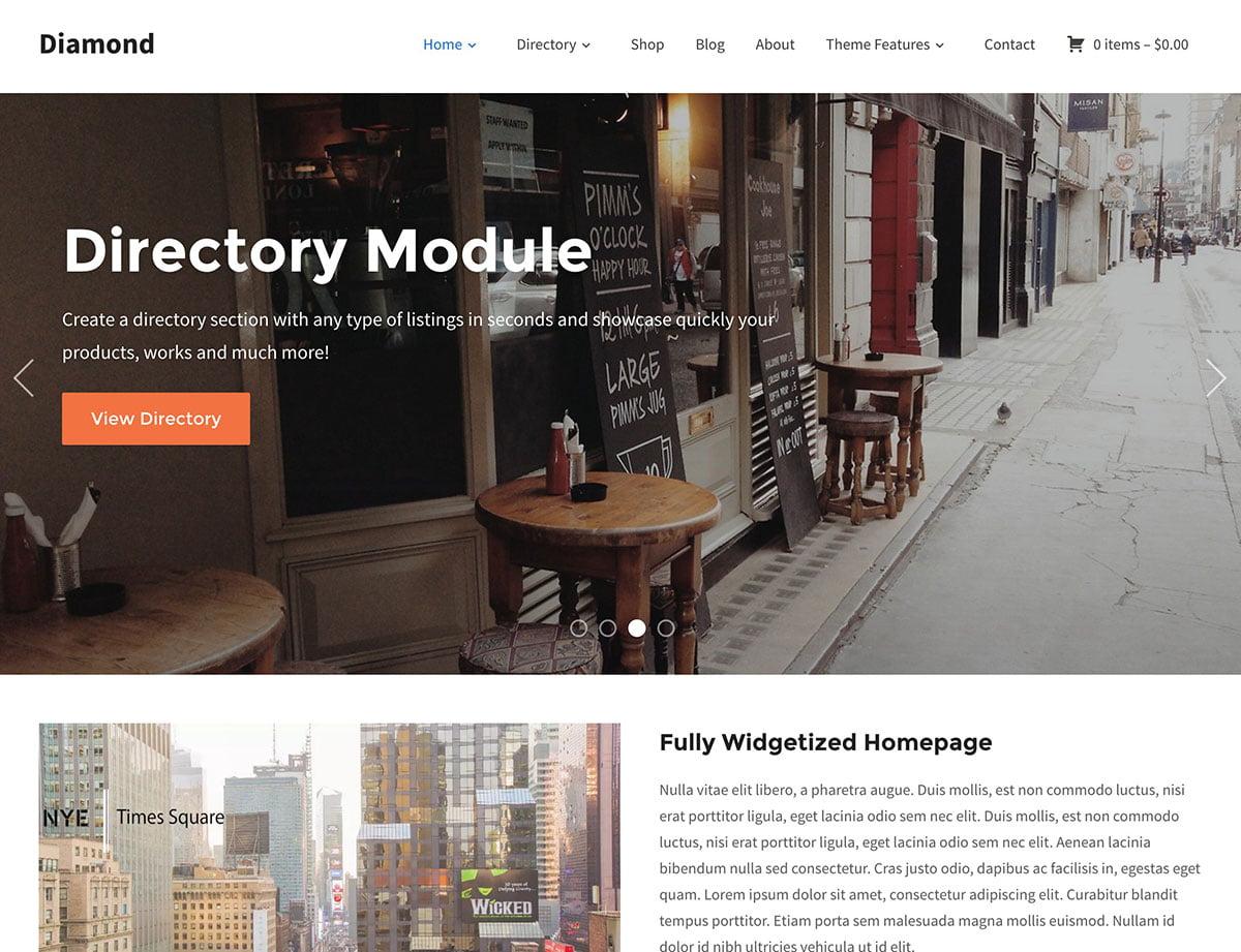 Diamond - 46+ Stunning WordPress Directory Themes [year]