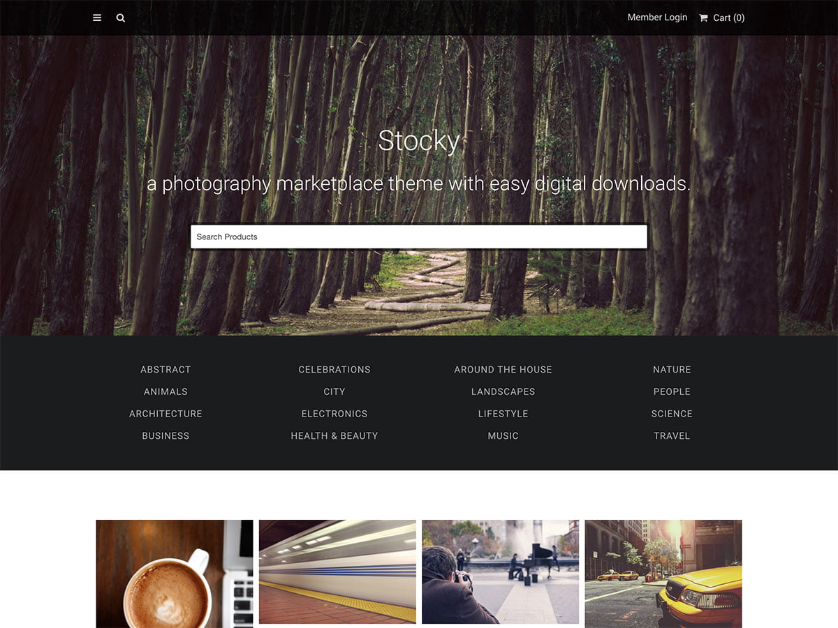 Digital-Products-Selling-Themes - 36+ Awesome WordPress Digital Products Selling Themes [year]