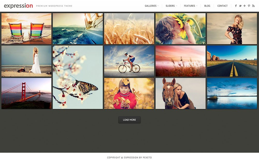 Expression - 36+ Top Quality WordPress Themes For Photography [year]