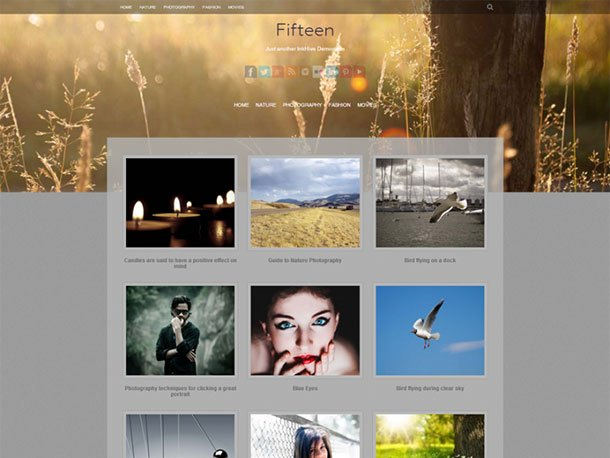 Fifteen - 51+ Nice Free WordPress Themes For Photography [year]