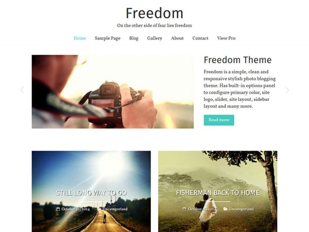 Freedom - 51+ Nice Free WordPress Themes For Photography [year]