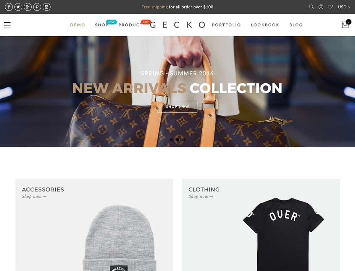 Gecko - 41+ Top WordPress Themes For Woocommerce [year]