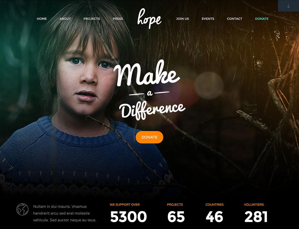 Hope - 36+ Amazing WordPress Themes For Non-Profit, Charity [year]