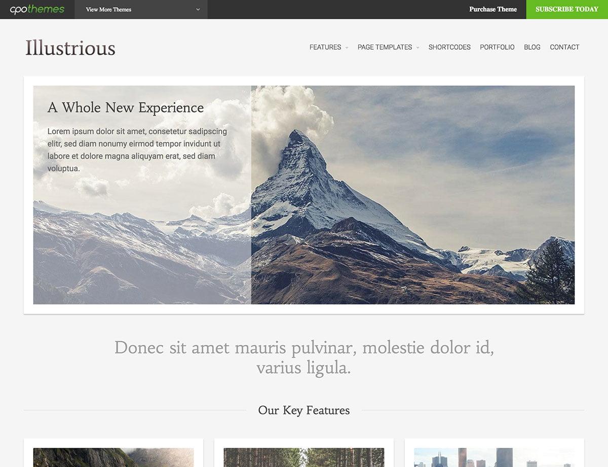 Illustrious - 46+ Nice Free WordPress Portfolio Themes [year]