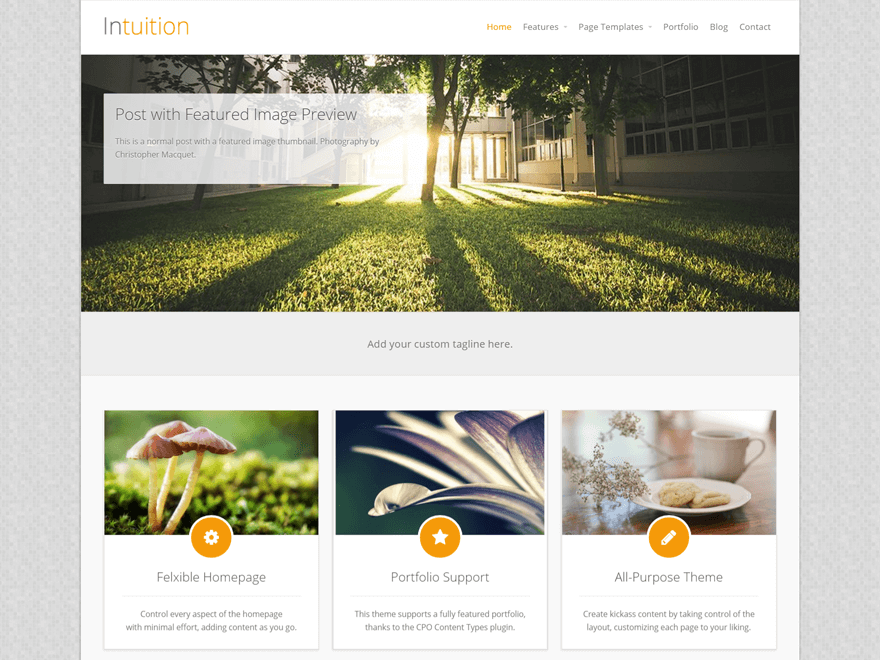 Intuition - 51+ Awesome Free WordPress Themes For Ecommerce [year]