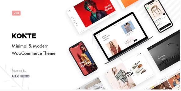 Konte - 36+ Nice Bookstore WordPress Themes [year]