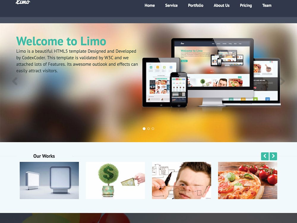 Limo - 46+ Best Free WordPress One Page Themes [year]