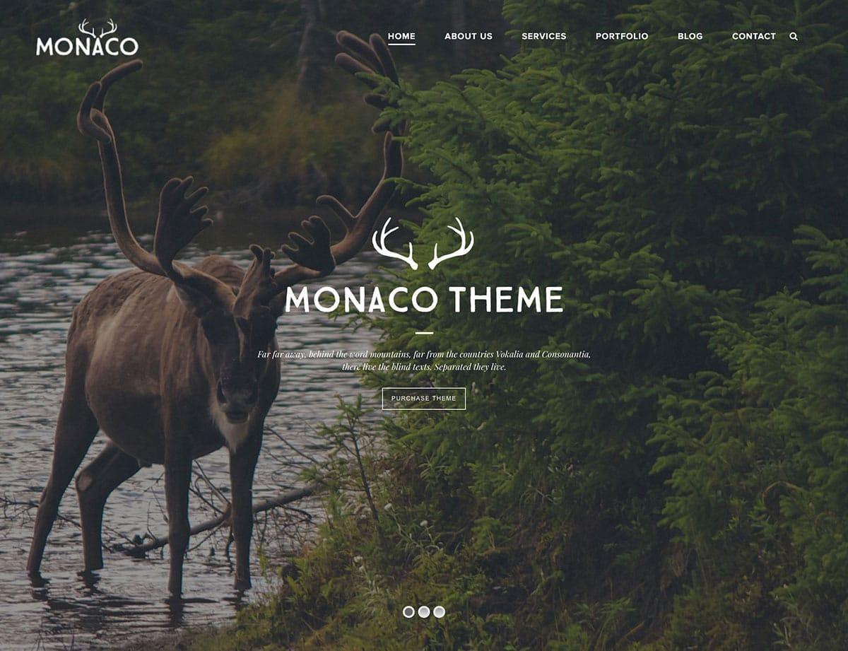 Monaco - 35+ Nice WordPress Themes For Multipurpose [year]