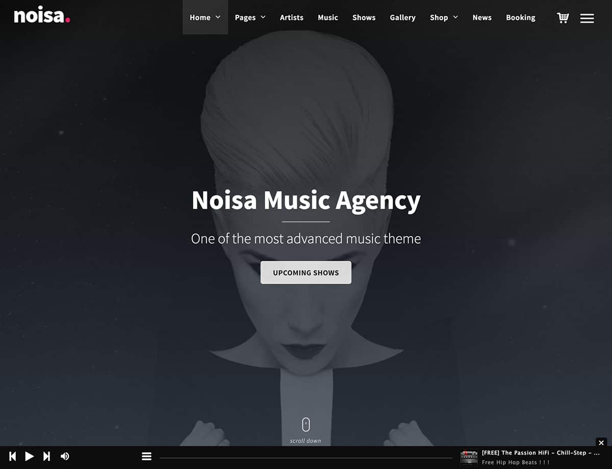 Noisa - 40+ Awesome WordPress Themes For Music [year]