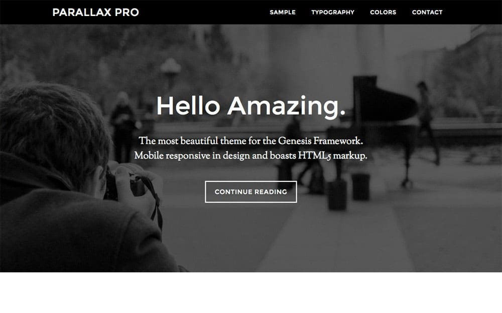 Parallax-Pro - 41+ Amazing WordPress Parallax Themes For You [year]