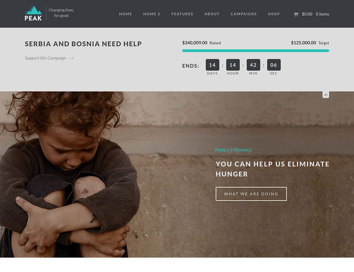 Peak - 36+ Amazing WordPress Themes For Non-Profit, Charity [year]