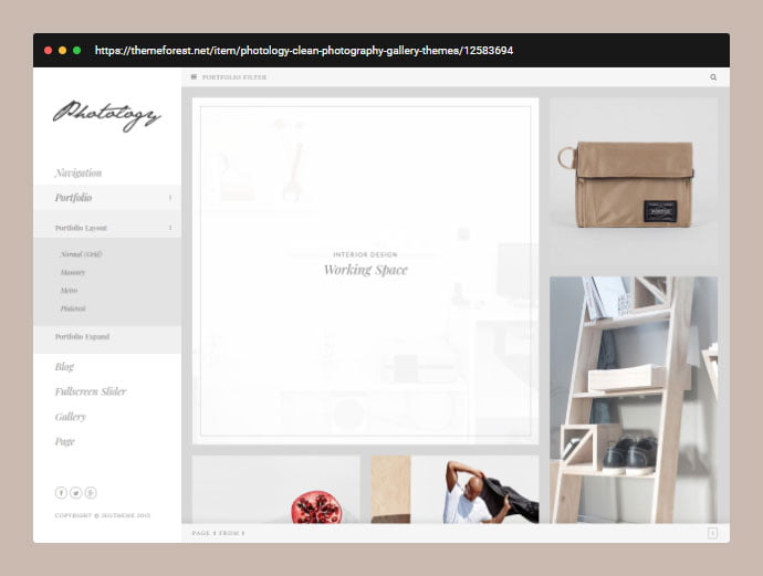 Photology - 31+ Awesome Wedding Photography Service WordPress Themes [year]