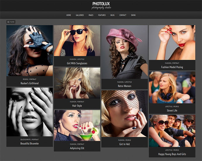 Photolux - 31+ Nice WordPress Themes For Dark Photography Portfolio [year]