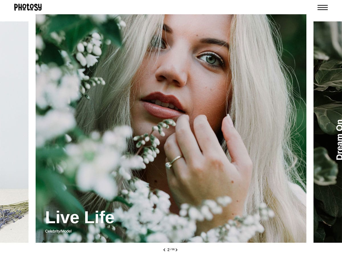 Photosy - 36+ Top Quality WordPress Themes For Photography [year]