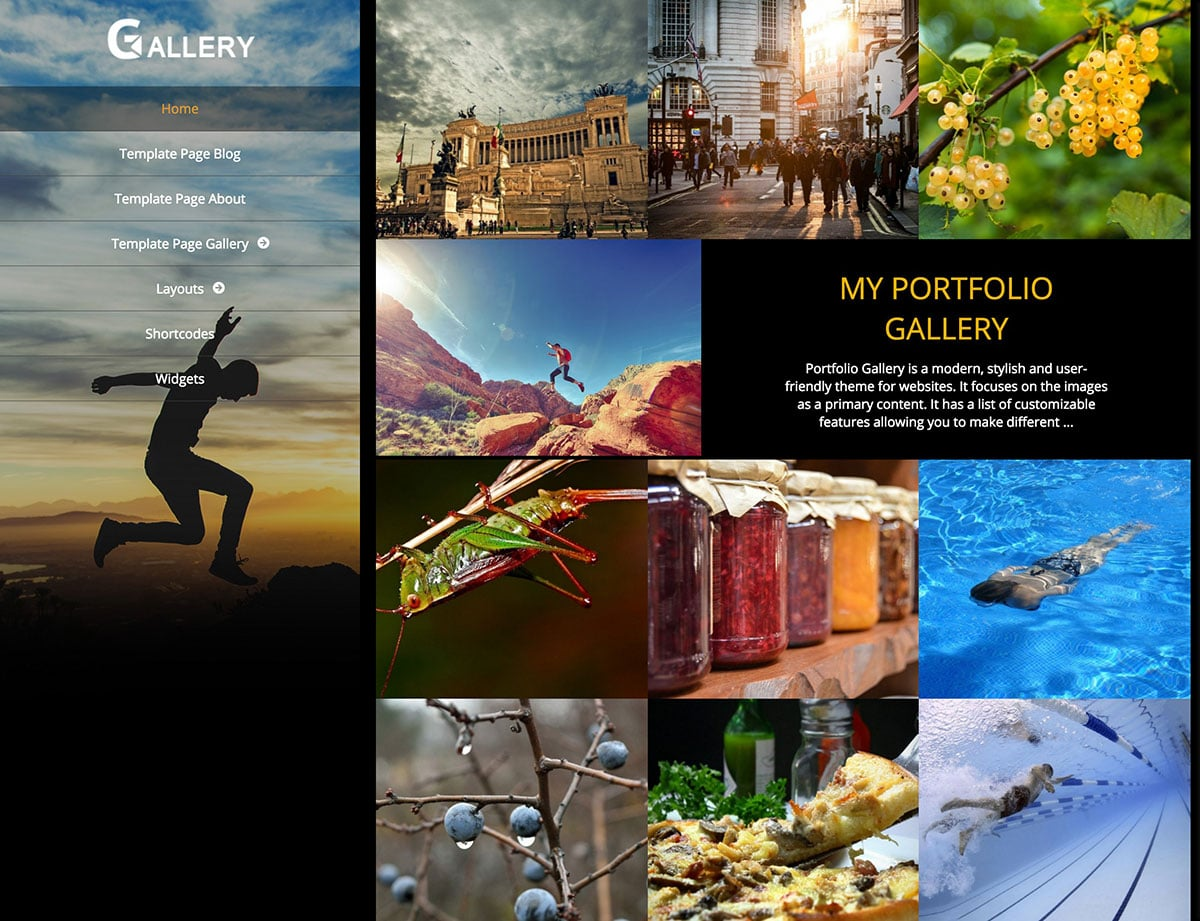 Portfolio-Gallery - 51+ Nice Free WordPress Themes For Photography [year]