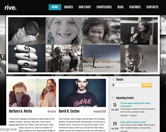 Rive - 36+ Amazing WordPress Themes For Non-Profit, Charity [year]