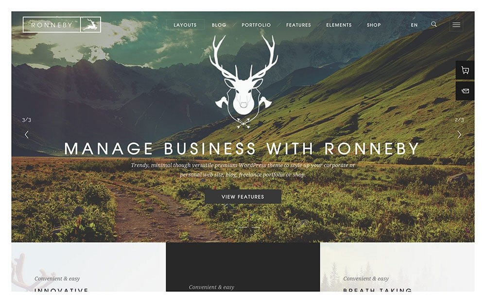 Ronneby - 41+ Amazing WordPress Parallax Themes For You [year]