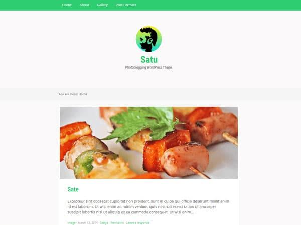 Satu - 51+ Nice Free WordPress Themes For Photography [year]