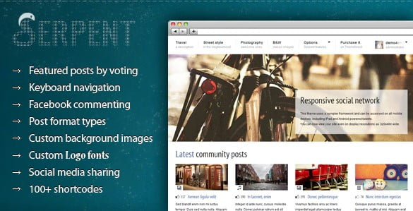 Serpent - 36+ Awesome WordPress Content Sharing Themes [year]