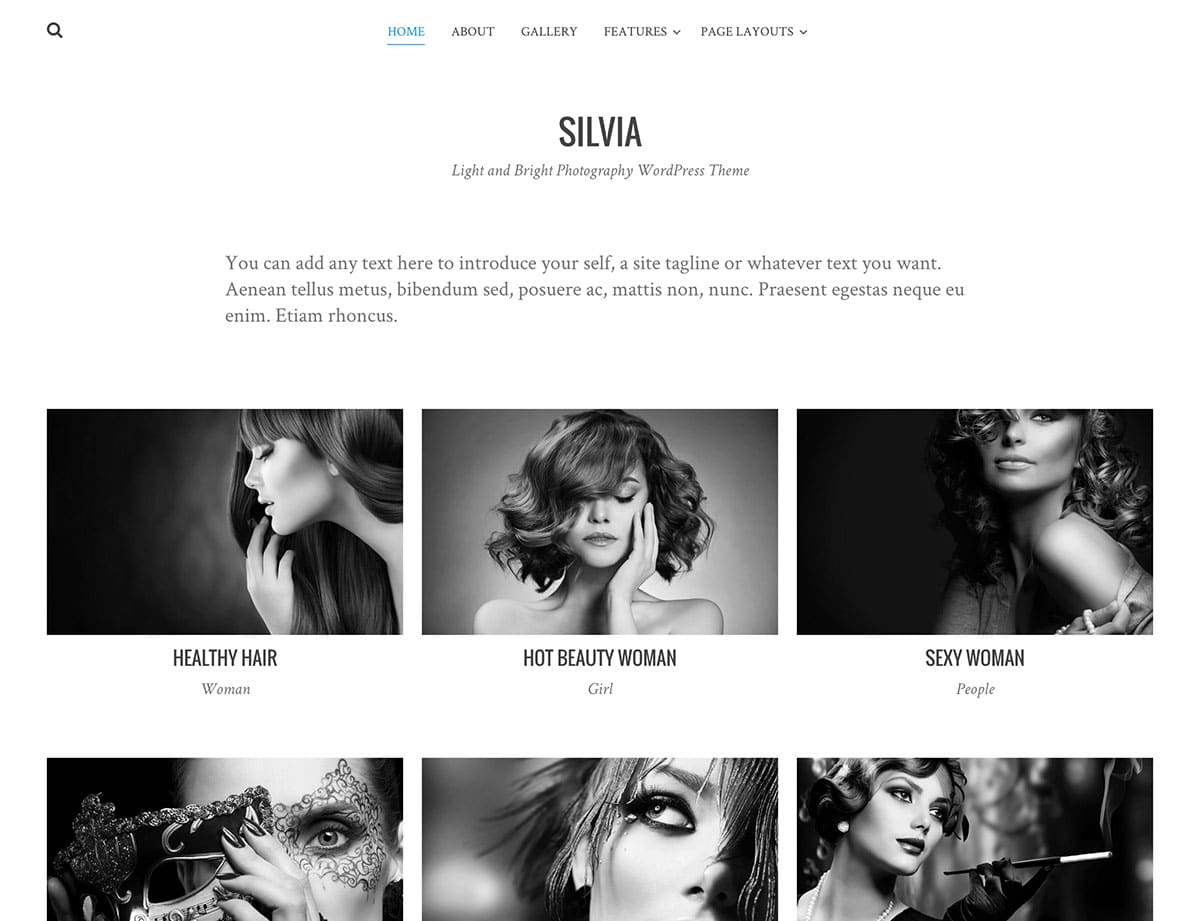 Silvia - 51+ Nice Free WordPress Themes For Photography [year]