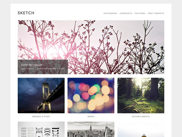 Sketch - 51+ Nice Free WordPress Themes For Photography [year]