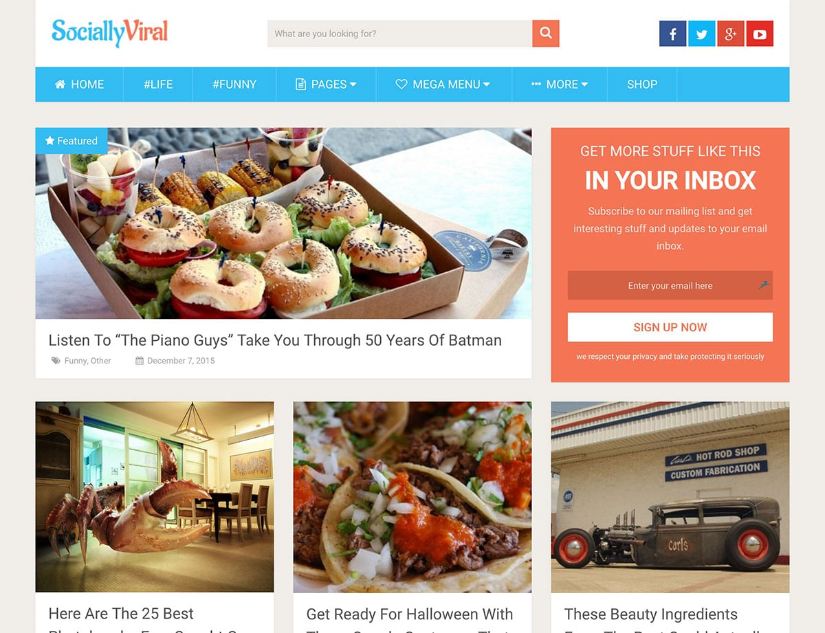 SociallyViral - 30+ Top Quality WordPress Themes For Viral [year]