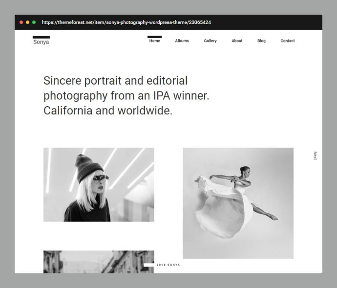Sonya - 31+ Awesome Wedding Photography Service WordPress Themes [year]