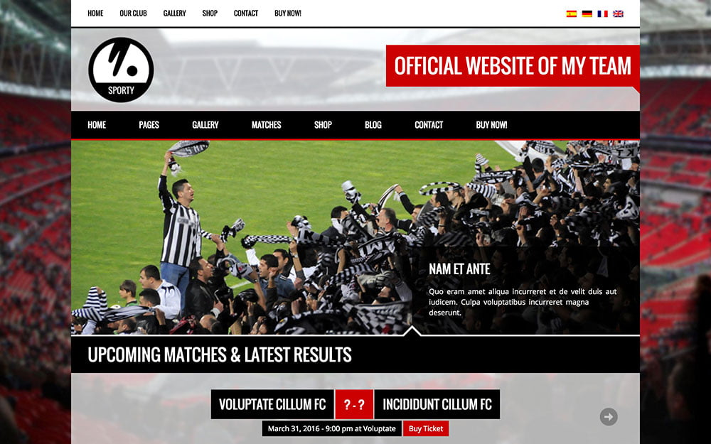Sporty - 31+ Nice WordPress Themes For Sports [year]