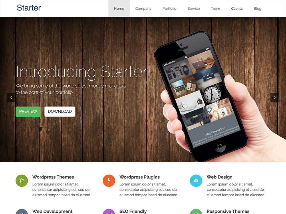 Starter - 46+ Best Free WordPress One Page Themes [year]