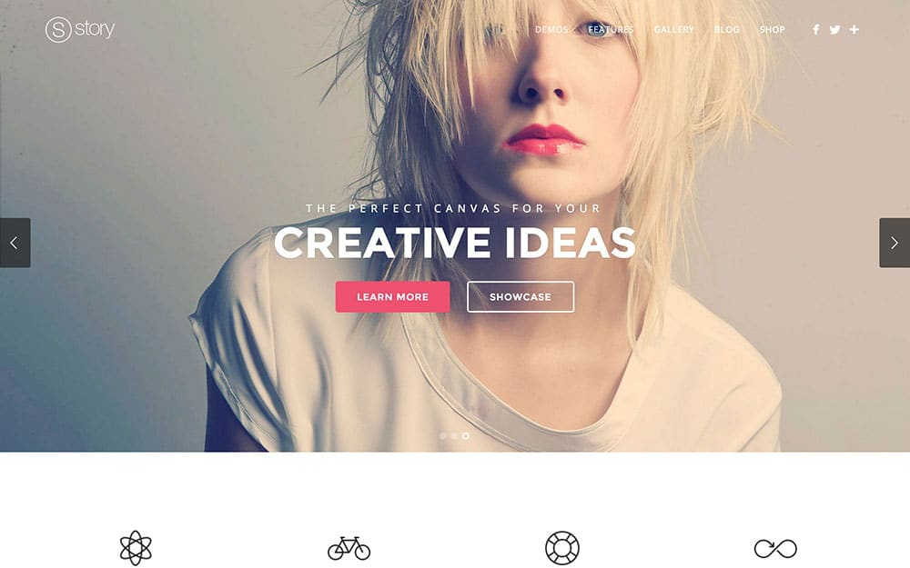 Story-2 - 41+ Amazing WordPress Parallax Themes For You [year]