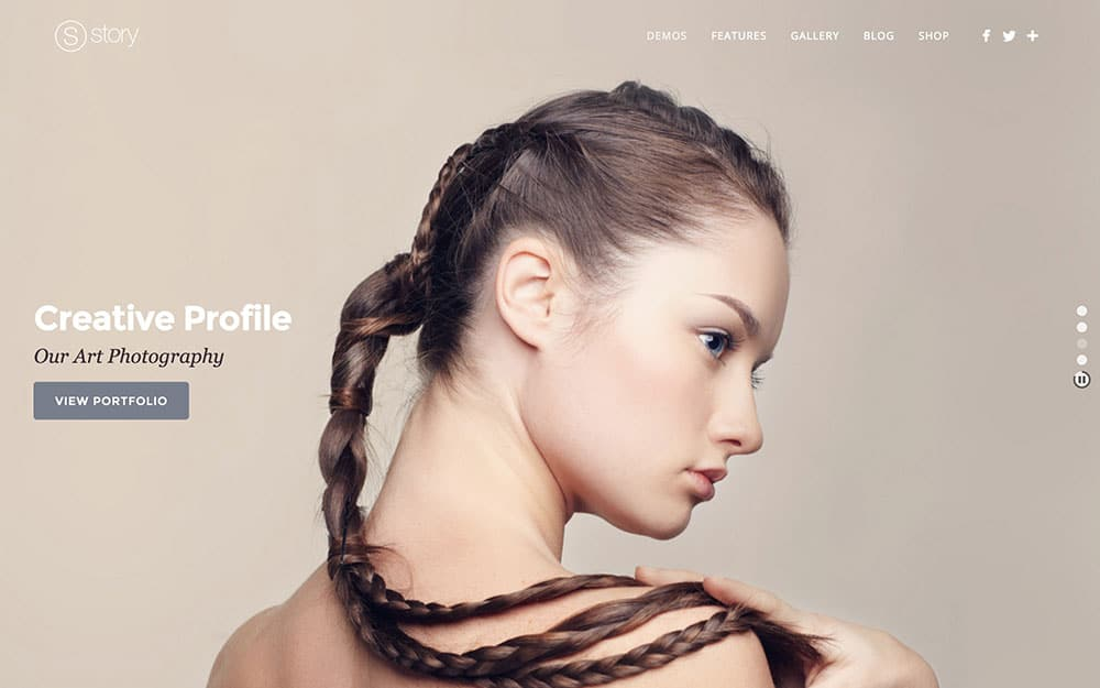Story - 36+ Top Quality WordPress Themes For Photography [year]