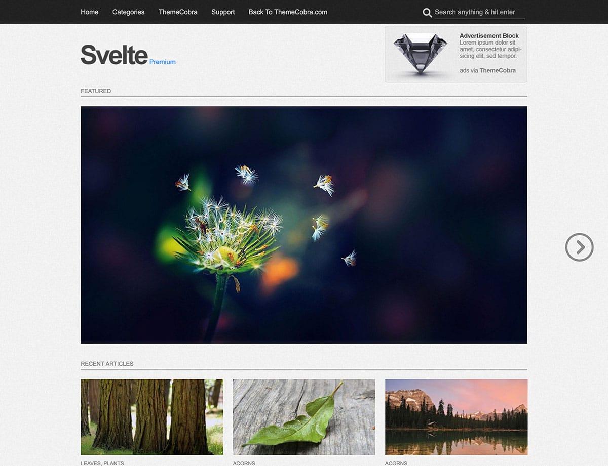 Svelte - 46+ Nice Free WordPress Portfolio Themes [year]