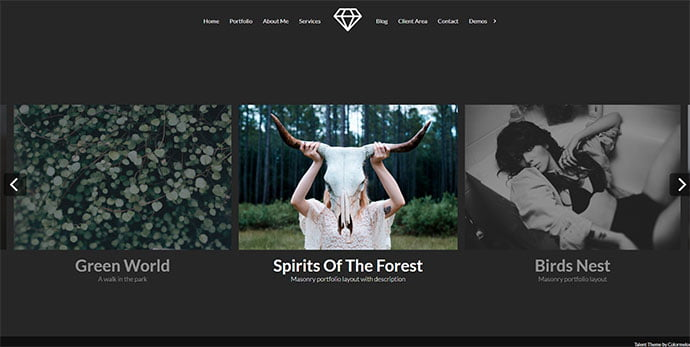 Talent - 31+ Nice WordPress Themes For Dark Photography Portfolio [year]