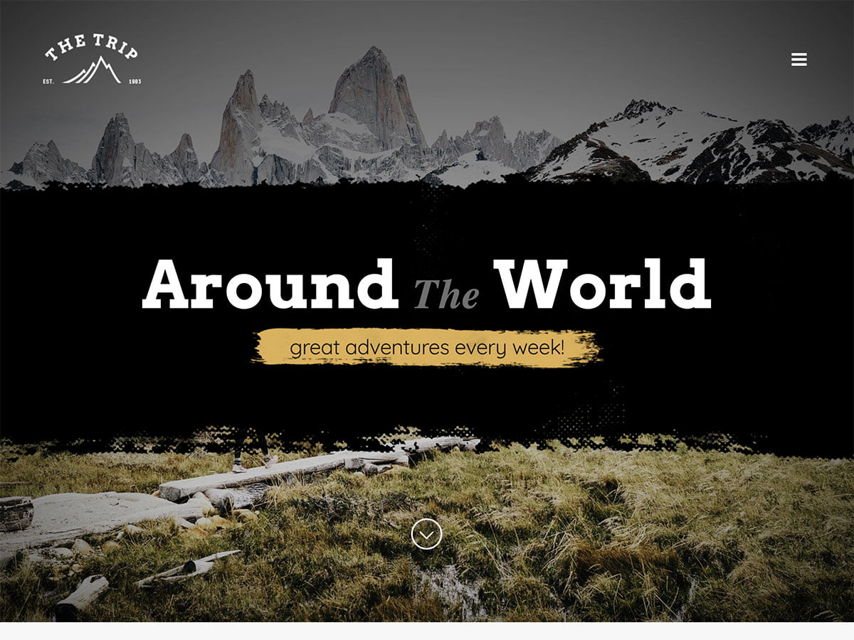 The-Trip - 30+ Awesome Travel Blog WordPress Themes [year]