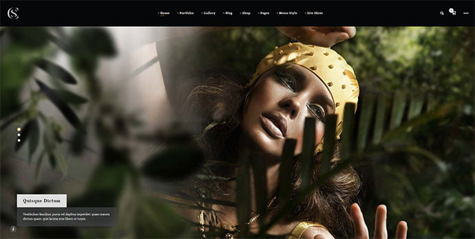 Thecs - 31+ Nice WordPress Themes For Dark Photography Portfolio [year]