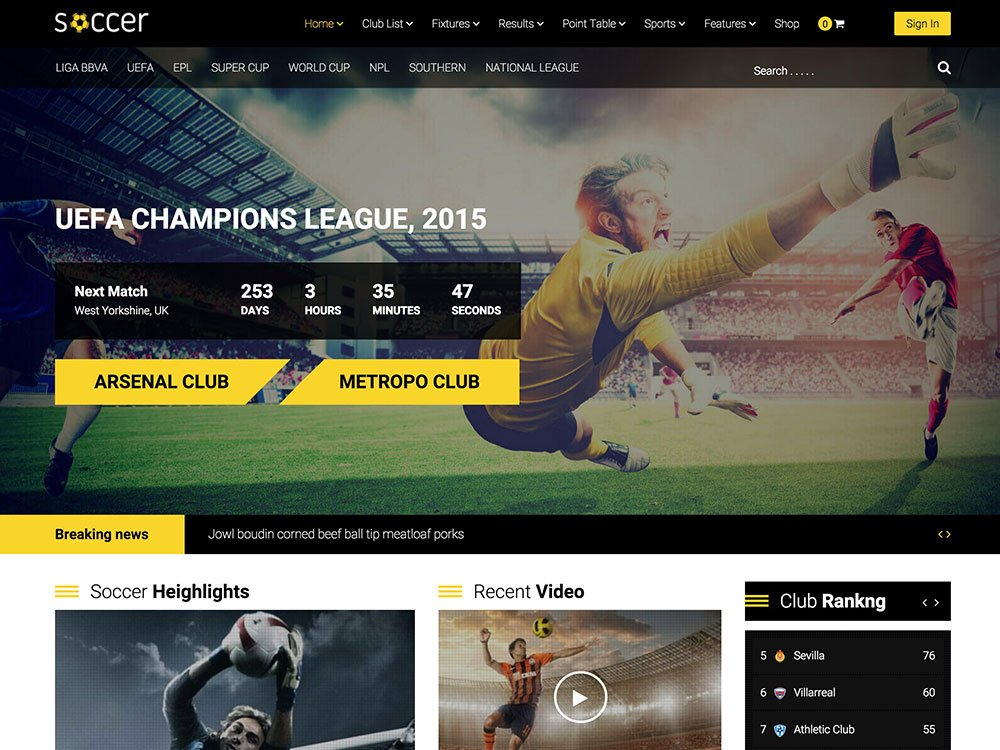 WP-Soccer - 31+ Nice WordPress Themes For Sports [year]